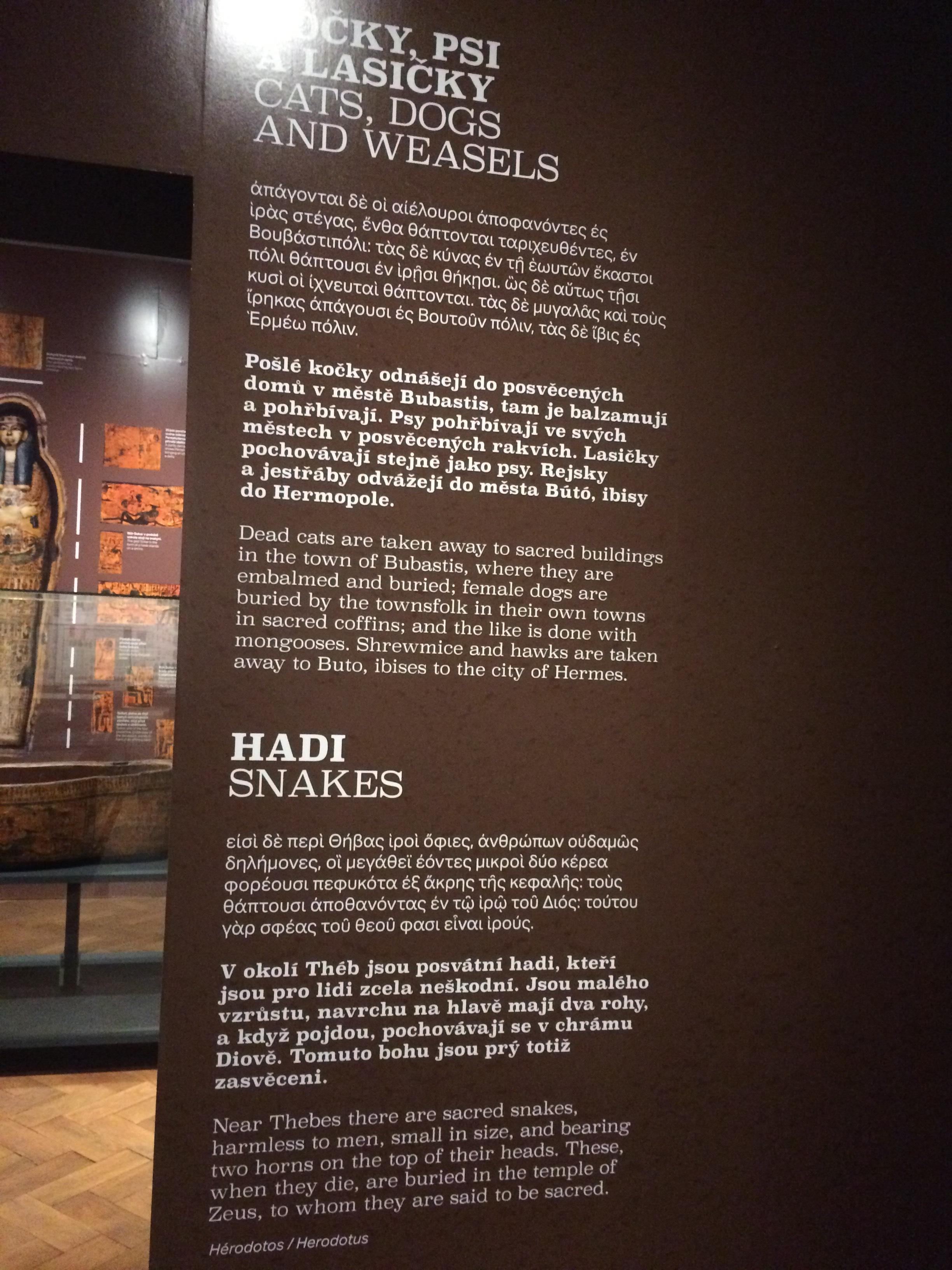 Greek, Czech and English exhibit description