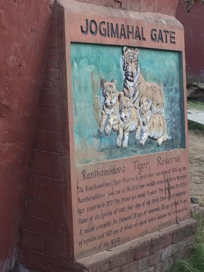 Ranthambhore Tiger Sanctuary
